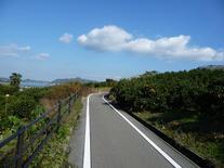 Shimanami4