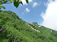 Tsubakuro2