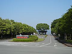 Hondakumamoto